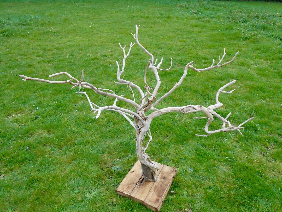 Arbre déco BSK   bois perdu   Les Bois de Stang Kervan