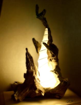 Lampe en bois unique